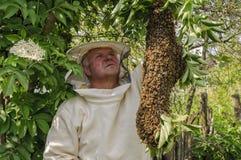 Bienenwächter mit einem Schwarm von Bienen Lizenzfreies Stockfoto