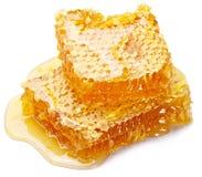 Bienenwabe Lizenzfreie Stockbilder