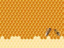 Bienenwabe geschnitten in Herzform lizenzfreie stockfotos
