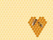 Bienenwabe geschnitten in Herzform stockbilder