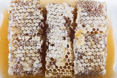 Bienenwabe mit Honig auf einem weißen Hintergrund Lizenzfreie Stockbilder