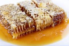 Bienenwabe mit Honig auf einem weißen Hintergrund Lizenzfreies Stockfoto
