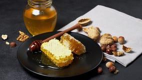 Bienenwabe mit Honig auf Platte Dunkler konkreter Hintergrund stock video