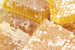 Bienenwabe mit Makrobildern stockfoto