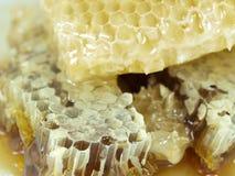 Bienenwabe und Honig Stockbild