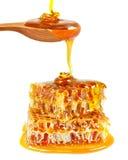 Bienenwabe und Honig Stockfoto