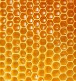 Bienenwabehintergrund Lizenzfreie Stockfotos