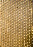 Bienenwabeineinander greifen Stockbild