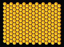 Bienenwaben Lizenzfreie Stockfotografie
