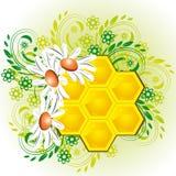Bienenwaben in den Blumen Stockfotos