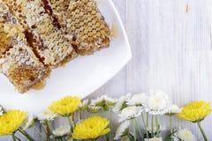 Bienenwaben und Blumen auf weißem hölzernem Hintergrund Stockfotografie