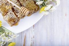 Bienenwaben und Blumen auf weißem hölzernem Hintergrund Stockbild