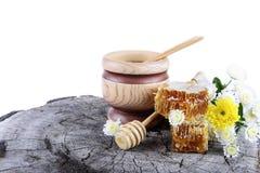 Bienenwaben und Blumen auf weißem Hintergrund Stockfotografie