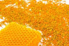 Bienenwaben und farbiger Blütenstaub auf einem Weiß Lizenzfreies Stockbild