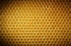 Bienenwabenhintergrund ohne Honig Stockfotografie