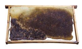 Bienenwabenmusterhintergrund Stockbilder