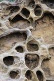 Bienenwabenverwitterungsmuster im Yehliu Geopark, neues Taipeh, Lizenzfreies Stockbild