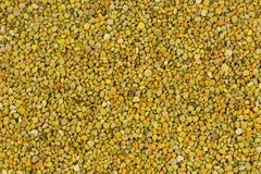 Bienenzucht des natürlichen Hintergrundes der Bienen-Blütenstaubbeschaffenheit Lizenzfreies Stockfoto