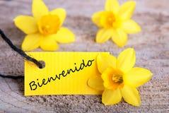 Bienvenido标记 免版税库存照片