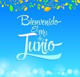 Bienvenido el mes de Junio -受欢迎的6月西班牙语发短信 库存例证