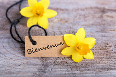 Bienvenue Tag Royalty Free Stock Images