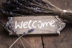 Bienvenue - välkomnande till Frankrike royaltyfri fotografi
