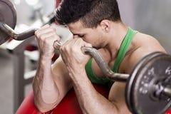 Bieps exercise Stock Image