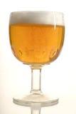 Bier 1 Royalty-vrije Stock Afbeeldingen