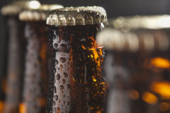 Bier stockfotografie