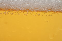 Bier. Detail of a beer in a glass Stock Photos