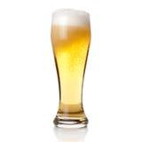 Bier in das Glas getrennt auf Weiß lizenzfreie stockfotos