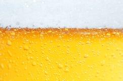 Bier ein Schaumgummi. Stockfoto