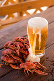 Bier en gekookte rivierkreeften royalty-vrije stock fotografie