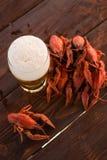 Bier en gekookte rivierkreeften stock afbeelding