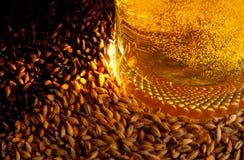 Bier en ingrediënten Stock Afbeelding