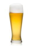Bier in Glas Lizenzfreie Stockfotografie