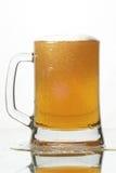 Bier in glas Royalty-vrije Stock Foto's