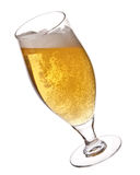 Bier in Glas auf Weiß Lizenzfreies Stockfoto