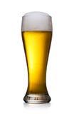 Bier in glas dat op wit wordt geïsoleerda Stock Fotografie