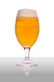Bier-Glas mit Reflexion Lizenzfreies Stockbild