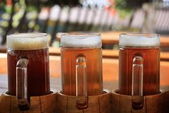 Bier-Himmel Stockbilder