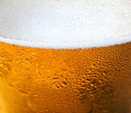 Bier-Hintergrund Lizenzfreies Stockfoto