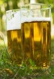 Bier im Gras Lizenzfreies Stockbild