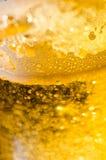 Bier in macro Stock Foto's
