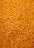 bier macro royalty-vrije stock foto's