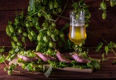 Bier met garnalen en salade op een houten lijst Stock Afbeeldingen