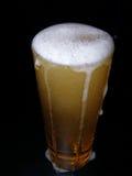 Bier met hoofd stock fotografie