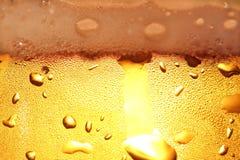 Bier met schuim. Royalty-vrije Stock Afbeeldingen