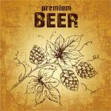 Bier mit Hopfen stock abbildung
