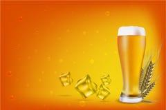 Bier mit Korn lizenzfreie abbildung